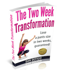 The Two Week Transformation book